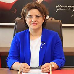 Prof. Dr. Emine ALP MEŞE